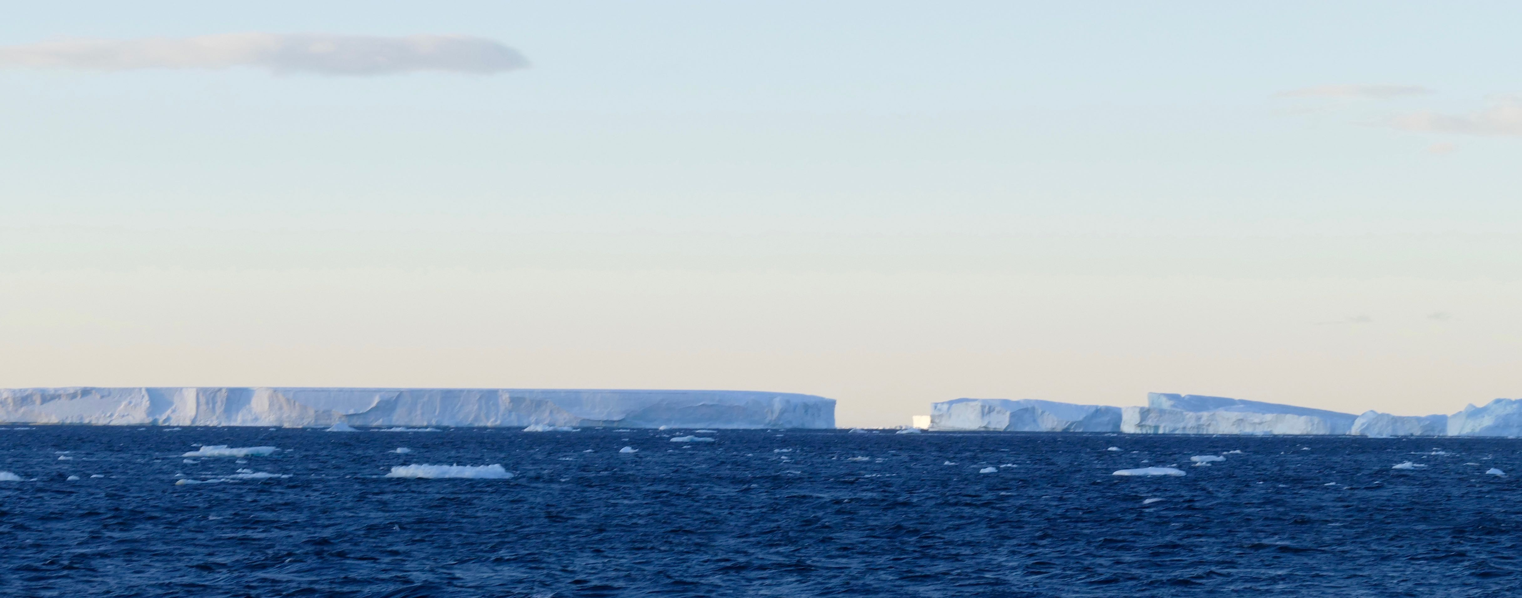 Icebergs in the Bransfield Strait