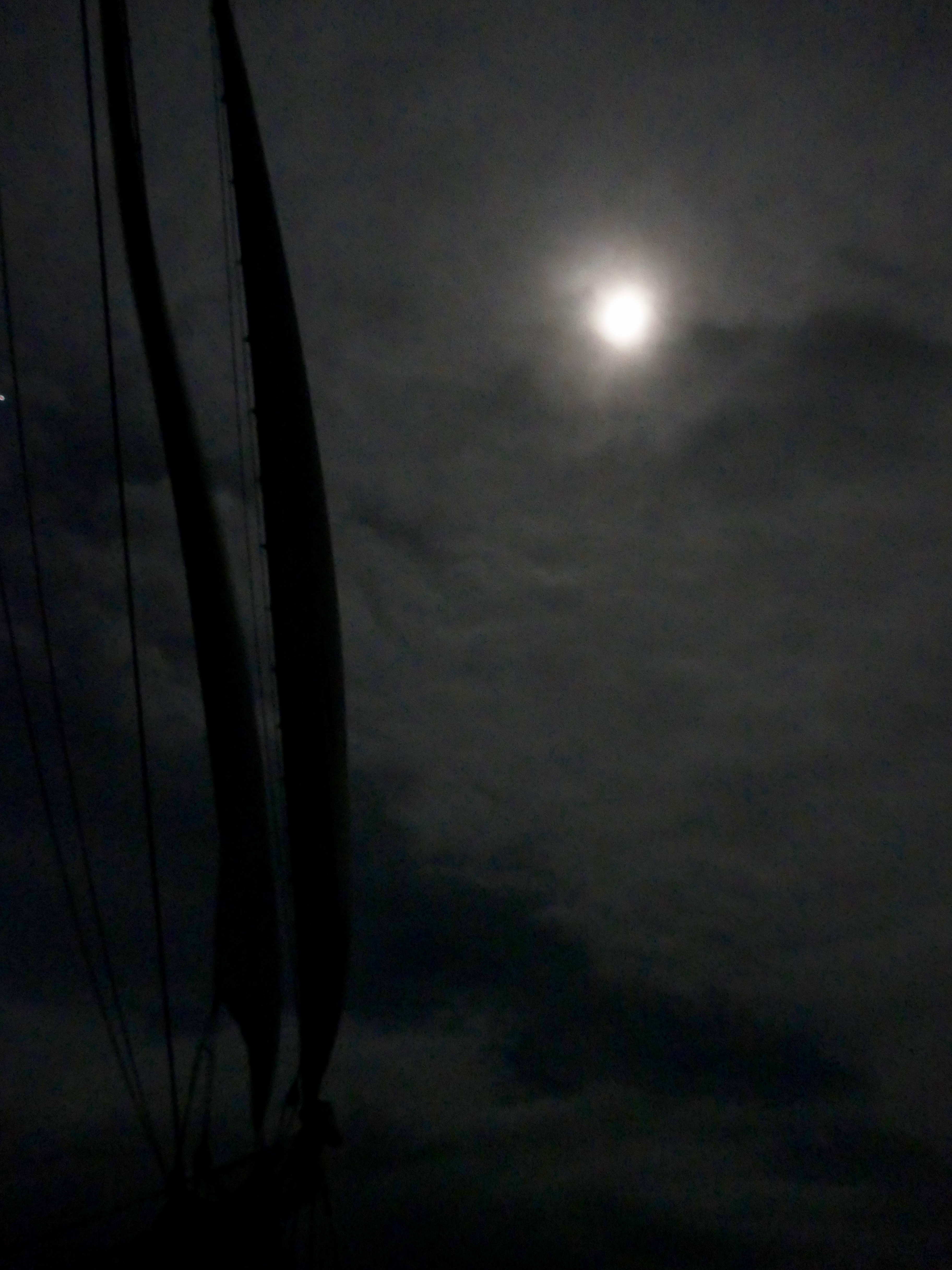 The moon and foresails of Europa at sea: the sailors' migration pulled by the moon and weather and season as surely as the wildlife