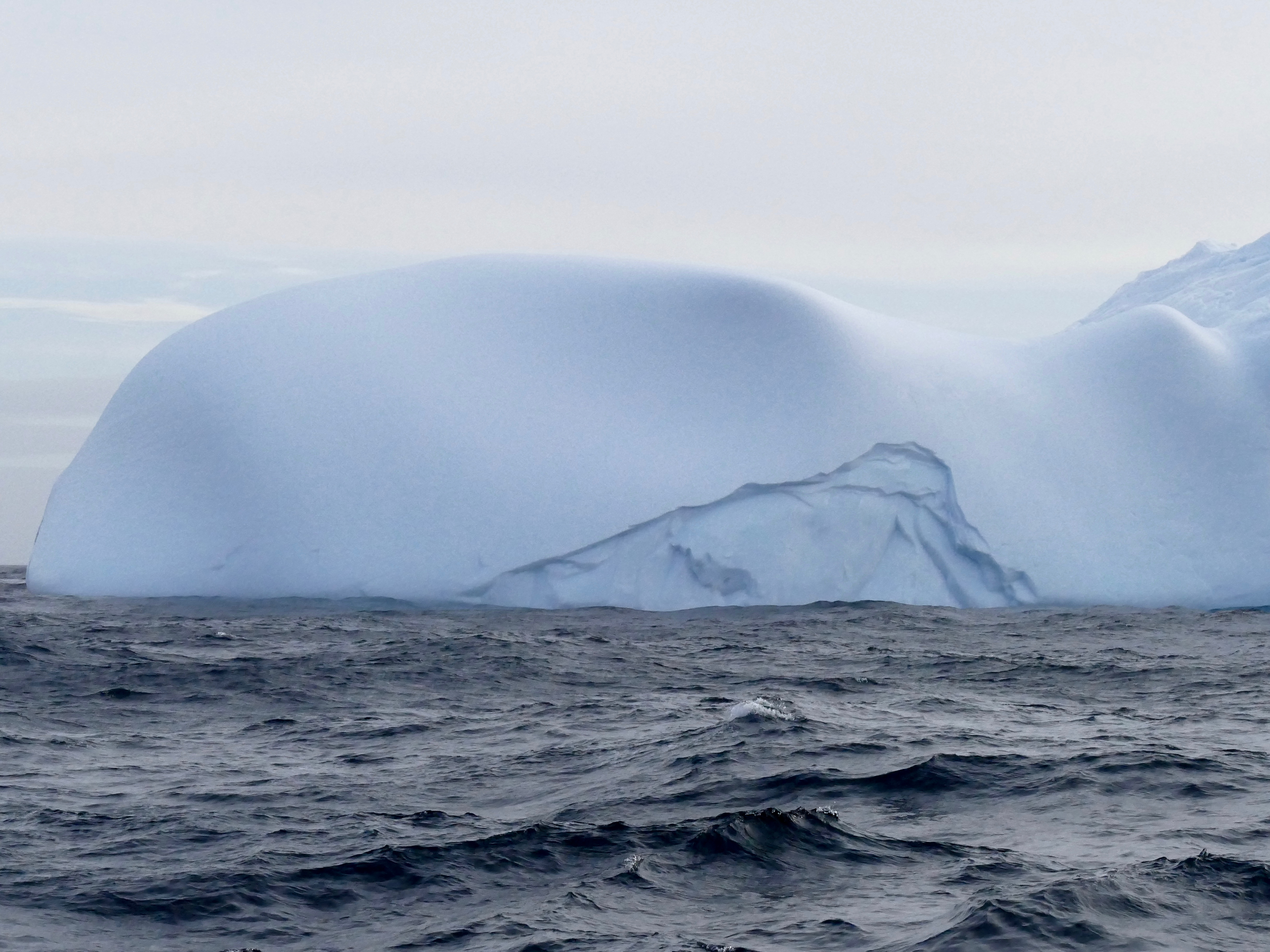 Whale head shaped icebergs in Weddell Sea