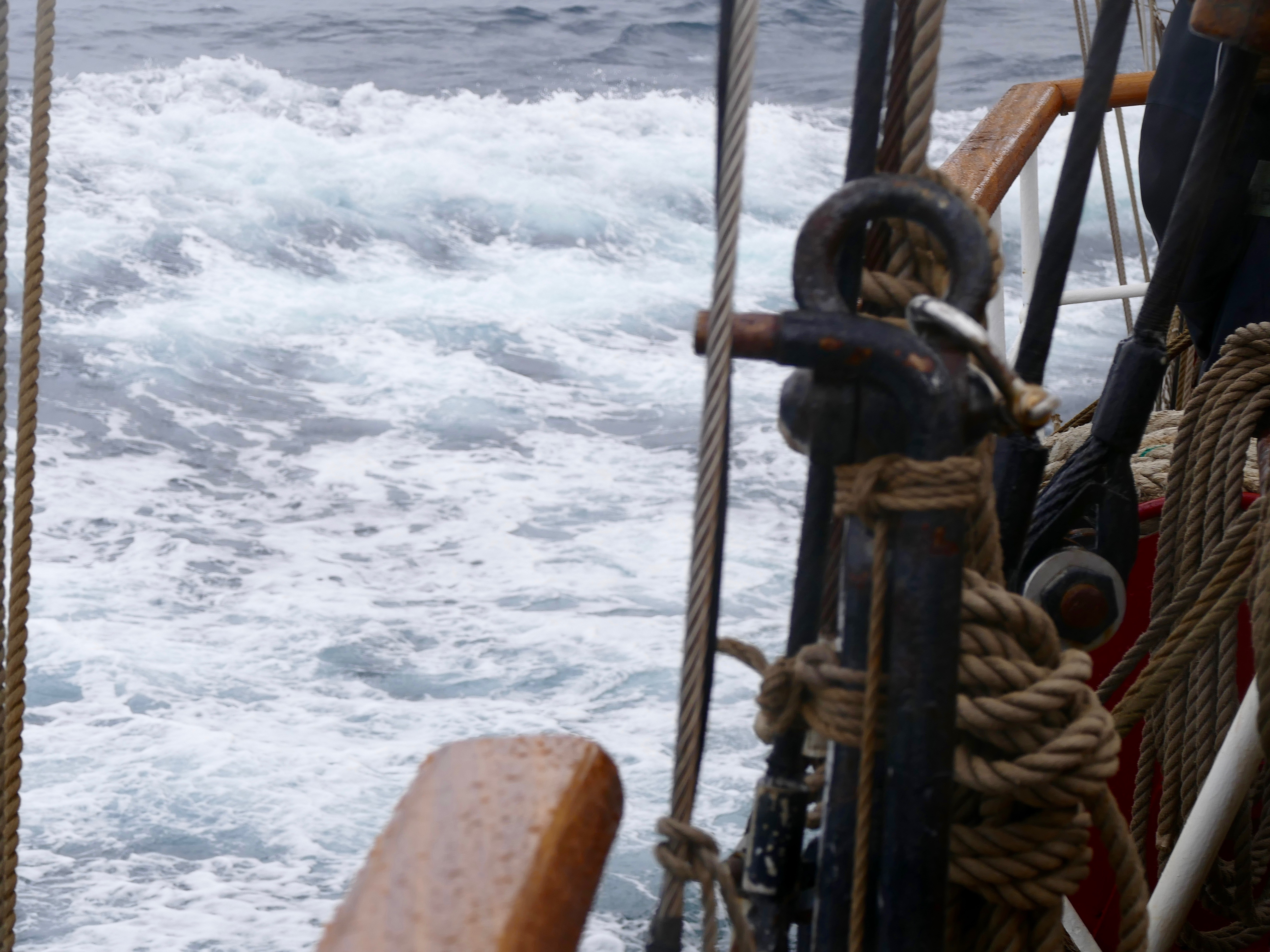 Leaving the land: water under our keel on the way from South Georgia to Tristan de Cunha